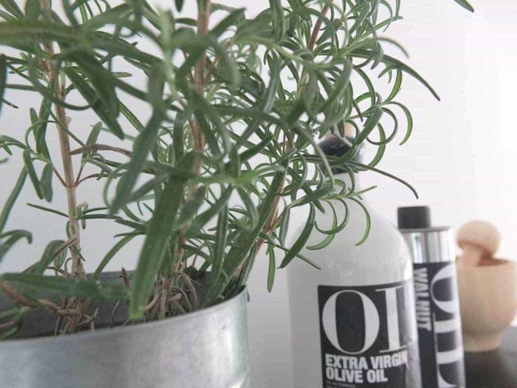 Wohngoldstück_String Pocket Regal schwarz. Styling-Ideen für die Küche