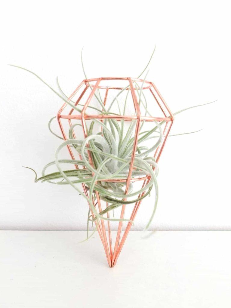 Wohngoldstück_Luftpflanze Tillandsie im kupferfarbenen geometrischen Anhänger