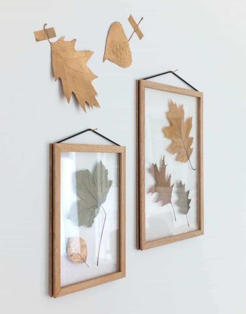 Wohngoldstück_DIY Herbstdekoration Blätter in Moebe Bilderrahmen und mit Holzklammerdiy-herbstdekoration-mit-blaettern-und-moebe-bilderrahmen-und-klammer-21