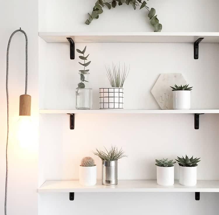 Wohngoldstück_Urban Jungle Bloggers Dezember 2016 Plants and Lights