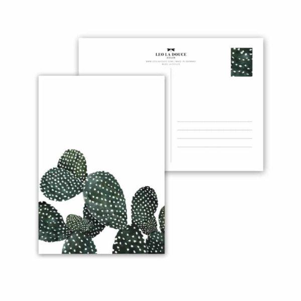 Wohngoldstück_Postkarte Leo la Douce Cactus Family