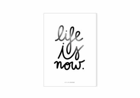 Wohngoldstück_Poster Life is now Navucko