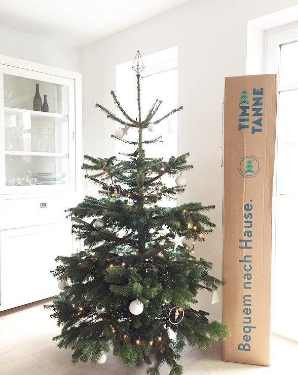 Wohngoldstück_Mein schöner Garten Weihnachtsbaum online bestellen