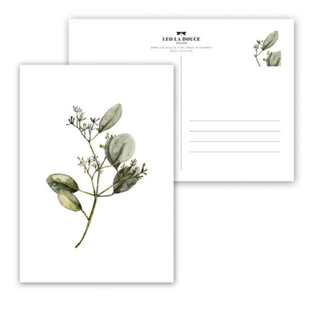Wohngoldstueck_Postkarte Leo la Douce Eucalyptus with Blossoms