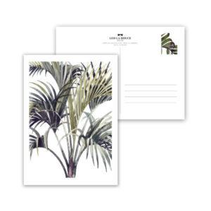 Wohngoldsatueck_Postkarte Leo la Douce Wild Palm