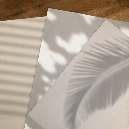 Wohngoldstueck_Paulsvera Wohngoldstück Geschenkpapier Shadows No 2