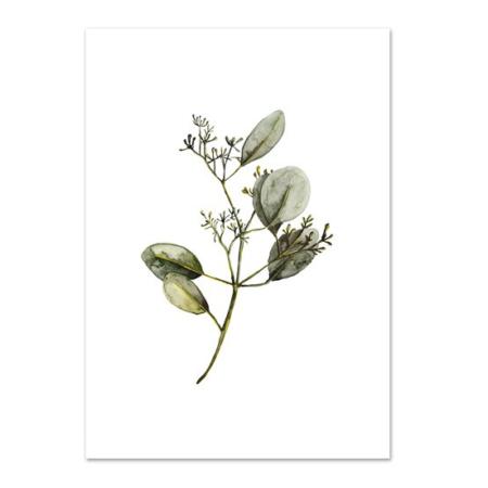 Wohngoldstueck_Kunstdruck Leo la Douce Eucalyptus with Blossoms